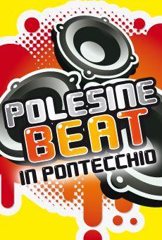 Polesine Beat in Pontecchio