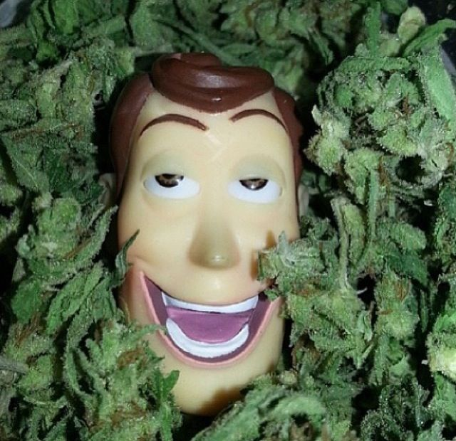 how to get weed with no dealer