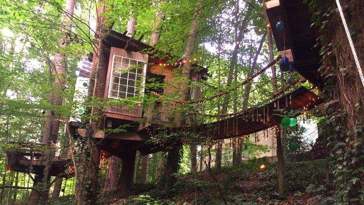 This incredible treehouse is Airbnb's most-wished-for listing