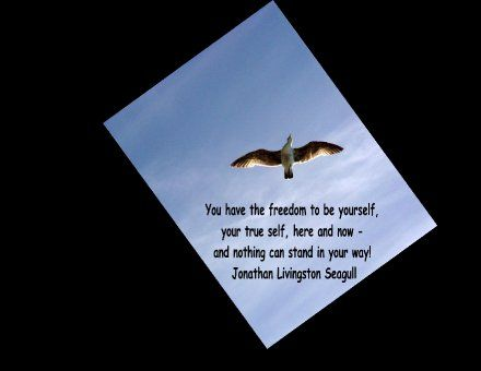 jonathan+livingston+seagull+quotes | ... Wallpaper Jonathan Livingston Seagull quote | Tales of Kindness