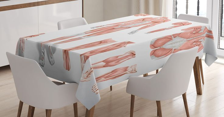 Human Anatomy Tablecloth by Ambesonne, Inner Muscle System Skin Structure with Cells Biology Health Medical Display, Dining Room Kitchen Rectangular Table Cover, 60W X 84L Inches, Coral Grey