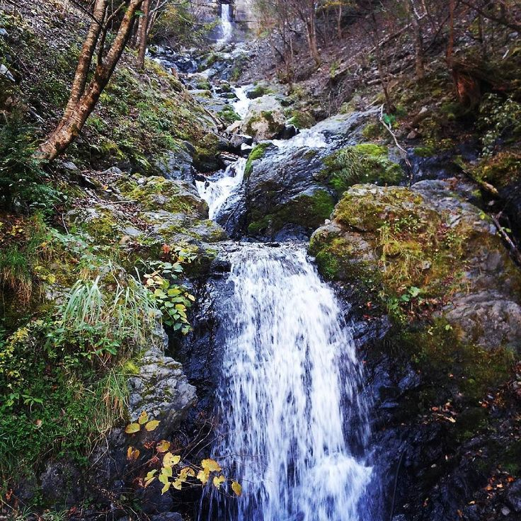 久しぶりの林道はゆっくり滝は撮れず唯一の一枚も古いスマホカメラでまたゆっくりこよう #四国の滝 #徳島 #スーパー林道
