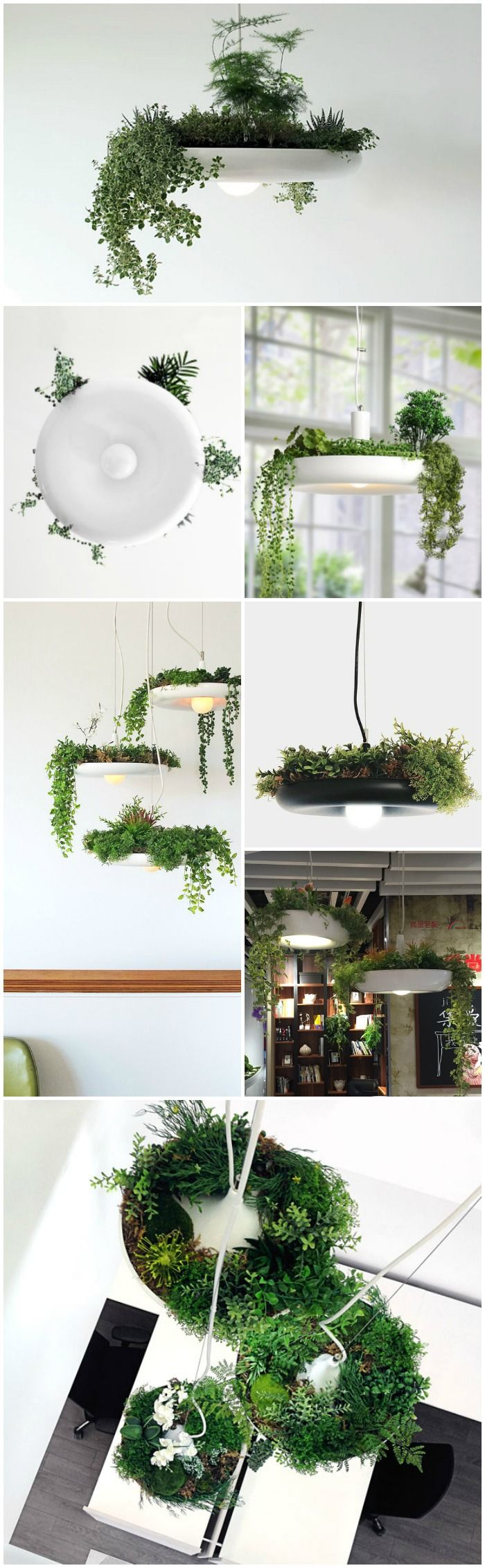 Babylon Lamp Brings Hanging Gardens Into Your Home