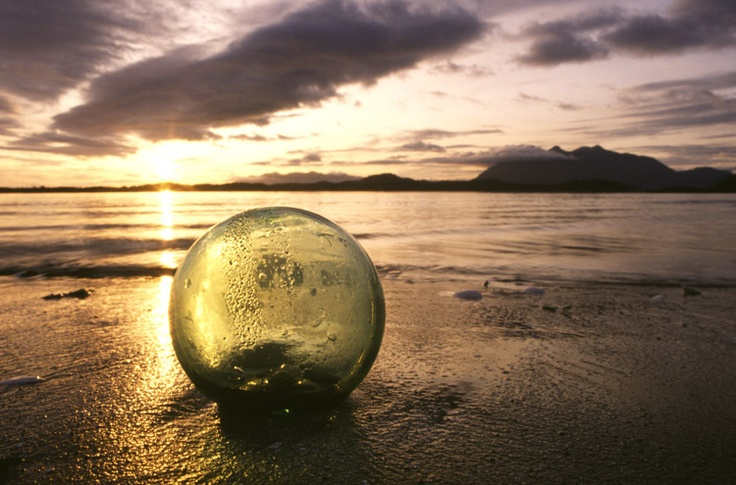 Beach combing sure has its rewards. You can still find these glass fishing floats that wash up on our shores after a long journey from Japan!