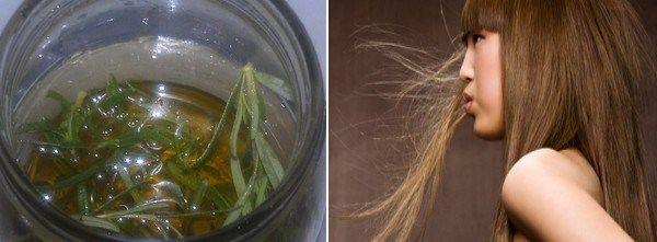 female hair loss treatment diet