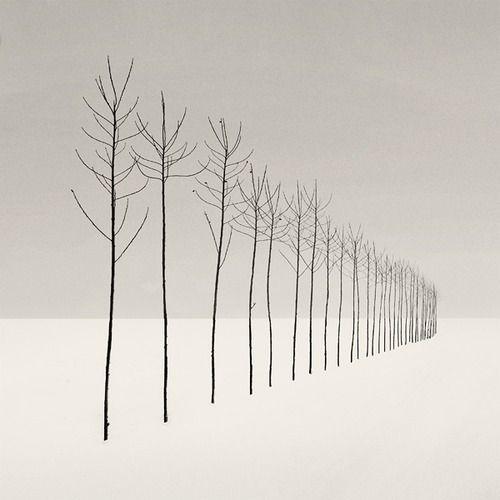 slenders By: Nilgun Kara