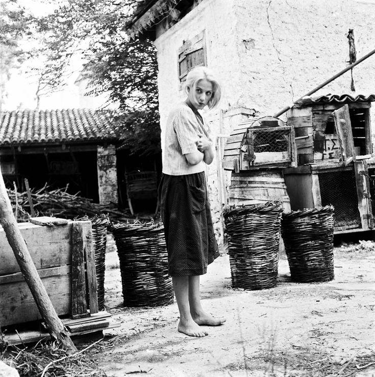 Finos Film - Photo Gallery Ταινίας: 'Ιστορία Μιας Ζωής' (1965)
