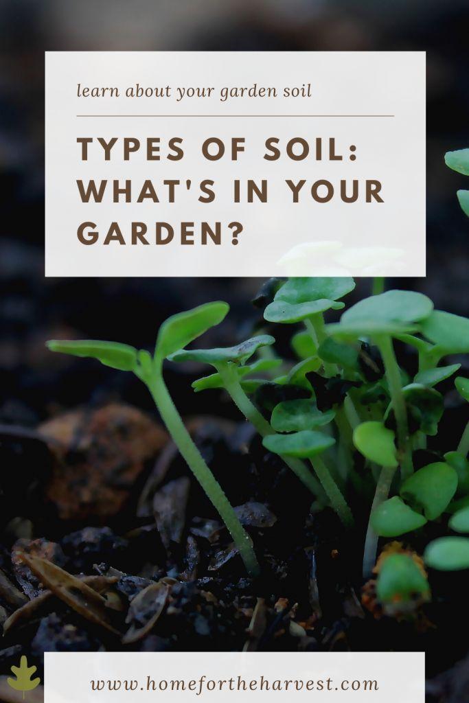 Types Of Soil What S In Your Garden Types Of Soil Garden Soil