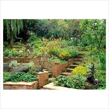 82 best tiered retaining wall ideas images on pinterest for Terraced landscape definition