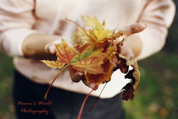 #leaves #autumn