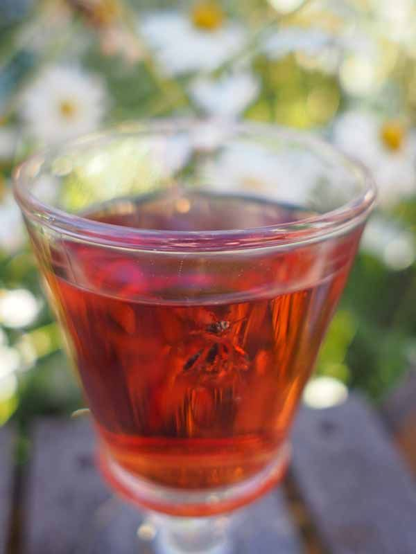 Make Your Own Cassis: INGREDIENTS 750g/1lb 10oz blackcurrants 1 litre/1¾ pints red wine 750g/1lb 10oz sugar 50ml/ ¼ cup vodka