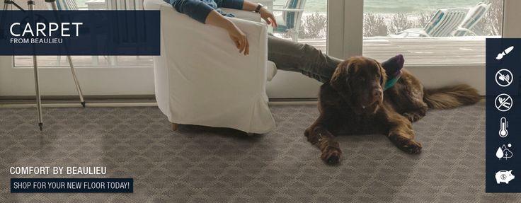 Learn all about Beaulieu Carpet!
