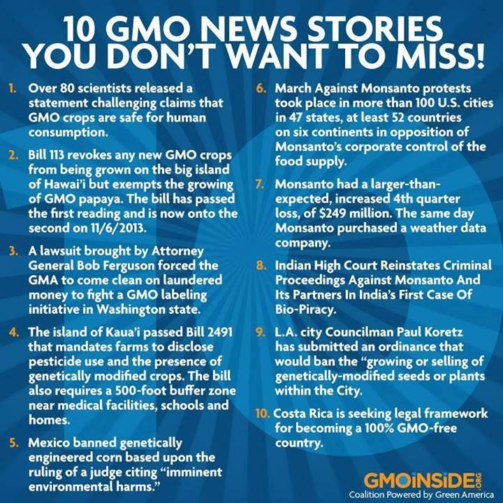 many argue genetically altered foods are not safe for consumption So you've done your homework, and you've decided to keep genetically engineered (gmo) foods out of your diet maybe you're concerned about your health, since (contrary to what the companies that create them claim) there is no scientific consensus about the safety of gmos, and gmo crops are.