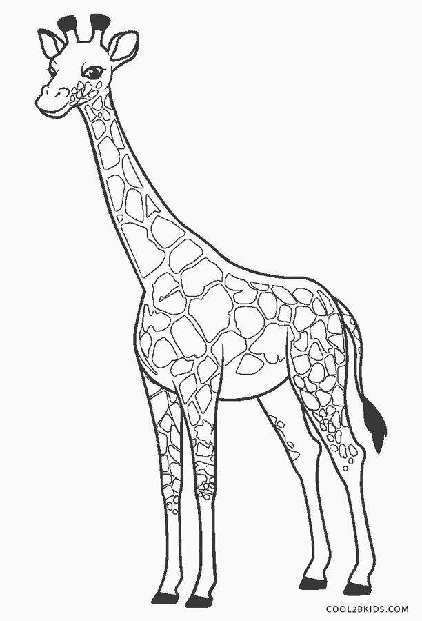 Free Giraffe Coloring Sheet