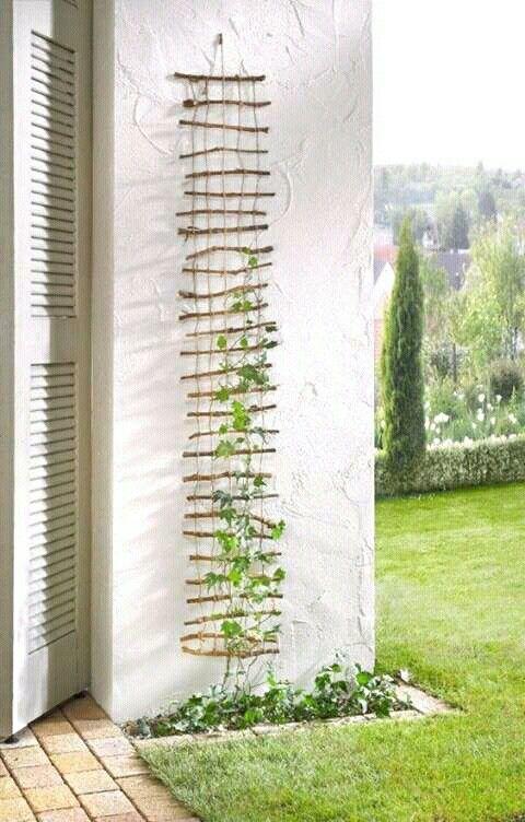 Flower ladder köynnökset köynnös seinälle kiipeämään seinäteline diy puutarha säleikkö