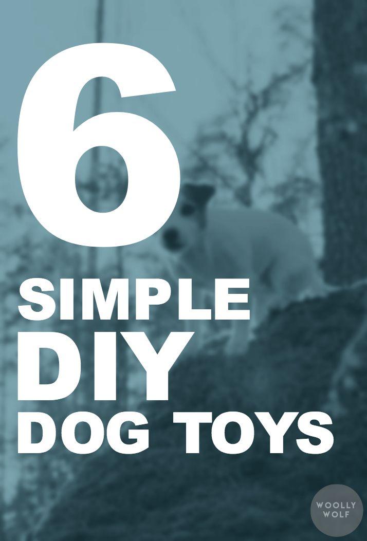 6 Simple DIY Dog Toys. Have fun with your dog, dog training ideas, dog hobby tips.