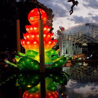1000 images about carol bock photography on pinterest Missouri botanical garden lantern festival
