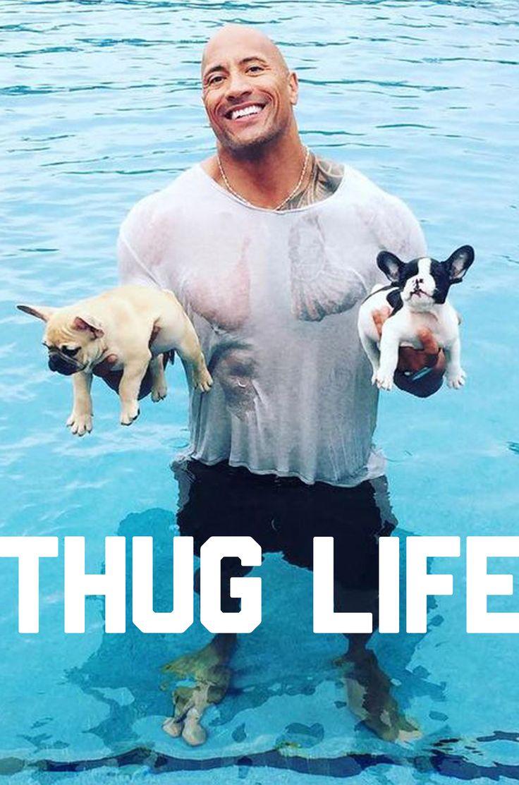The Rock is living the thug life, too. He even saved a cute little puppy from drowning... In the ring, on film or in real life, Dwayne Johnson is always the babyface. Wrestling is fake, The Rock is real. #The Rock