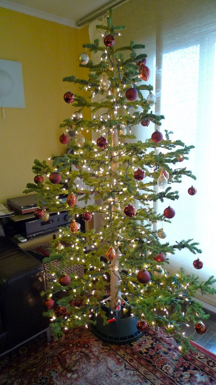 25 best Silver Tip Christmas Trees images on Pinterest ...