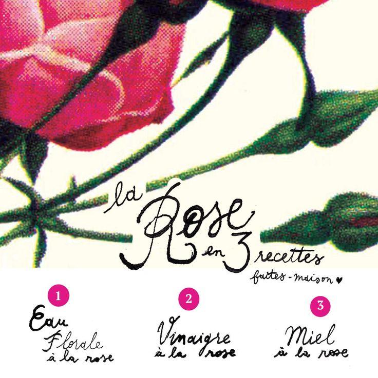 La rose : 3 recettes à faire à la maison
