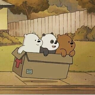 bebes osos, episodio de la caja