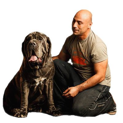 Η Σκέψη του Σκύλου - Εκπαιδευτής Σκύλων - Χρήστος Κούτσης
