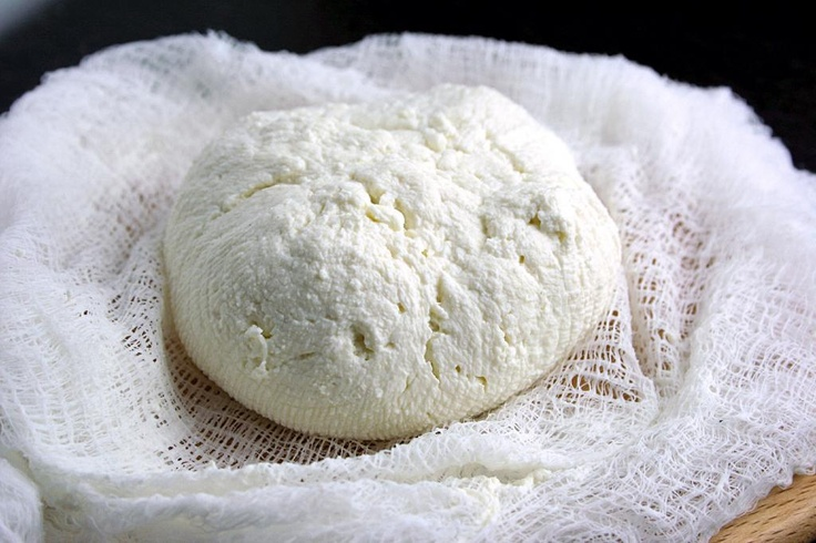 home made cheese