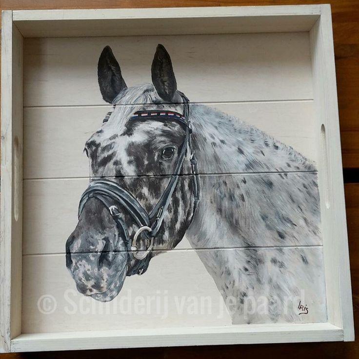 Prettig #appaloosa painted on a tray by Schilderij van je paard