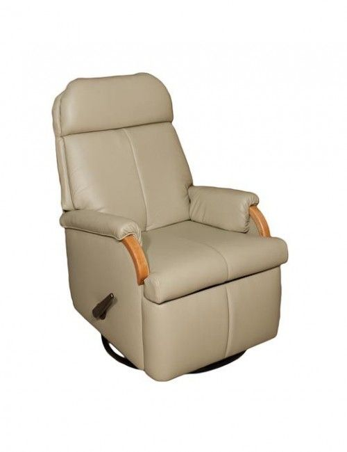 Small leather rv recliner