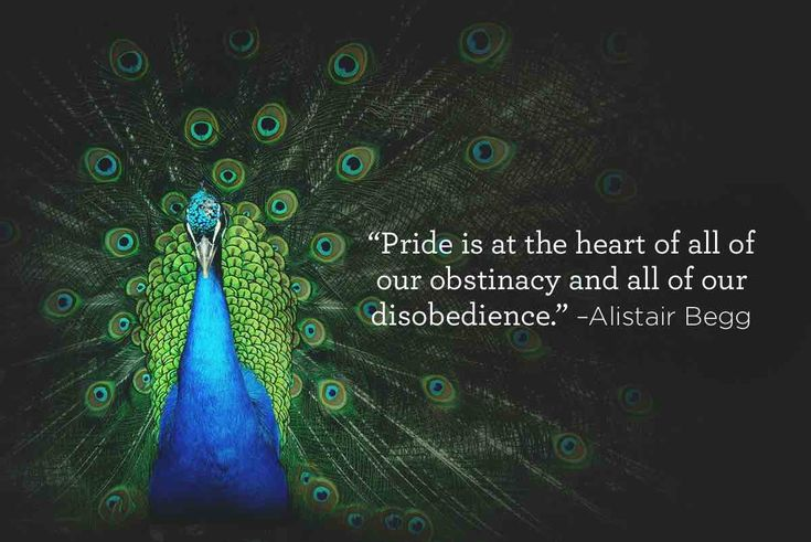 Pride is at the heart of all of our obstinacy and all of our disobedience –Alistair Begg