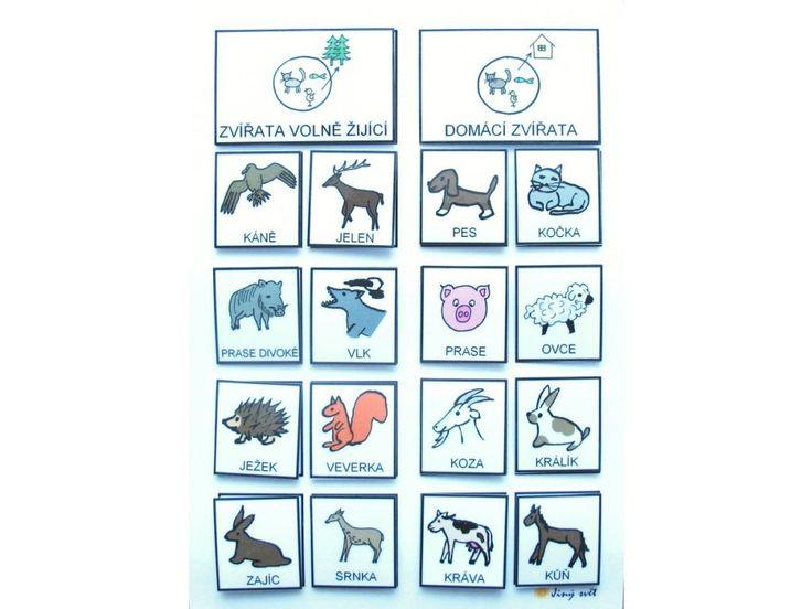 Jiný svět Třídíme: Zvířata volně žijící   / Domácí.   Strukturovaný úkol  Strukturované učení dává dětem jistotu, řád, vše má své místo. Je vhodné pro děti se spec.vzdělávacími potřebami, např. autismus, dysfázie, MR a jiné komunikační poruchy. Úkolem je roztřídit obrázky