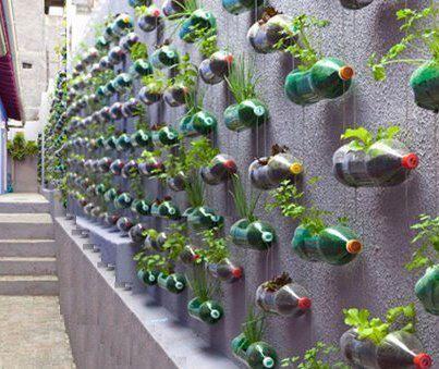 Recyclage des bouteilles plastiques - Chez careli | Gestion des déchets | Scoop.it