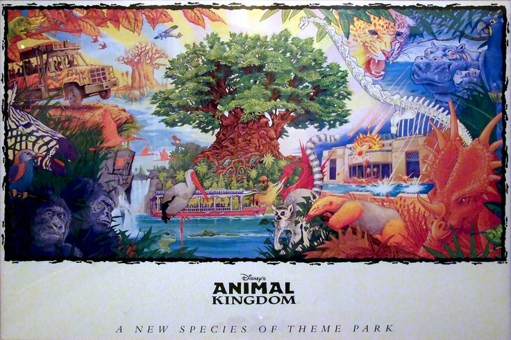 It is not only about Animals, it is... - Disney's Animal Kingdom