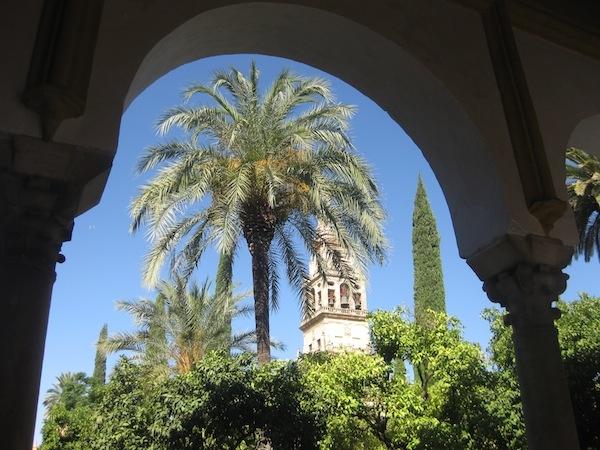 Dos Cortados in Cordoba Andalusie Spanje