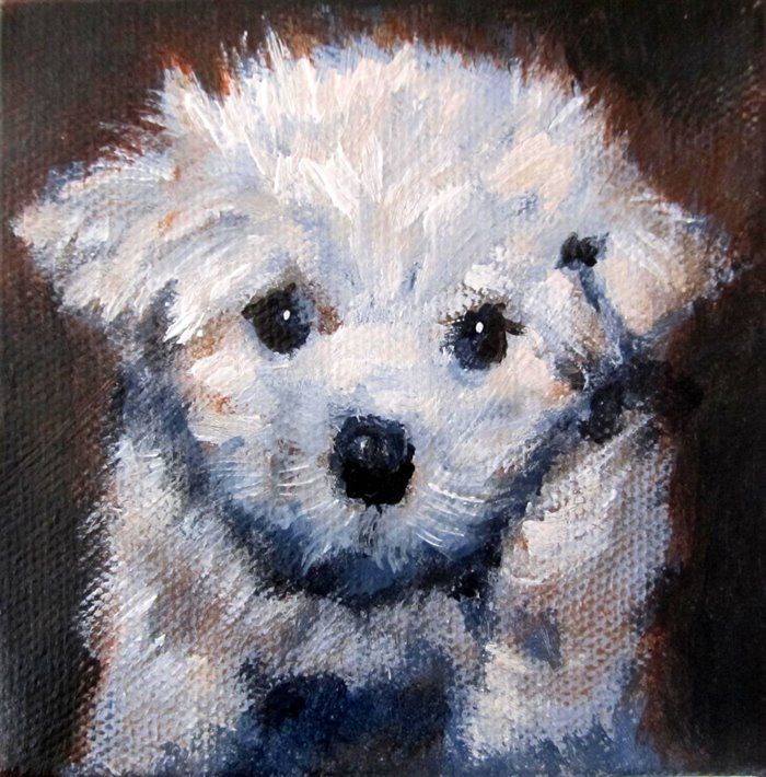 Fluffy puppy #1 by Hilary Weeks