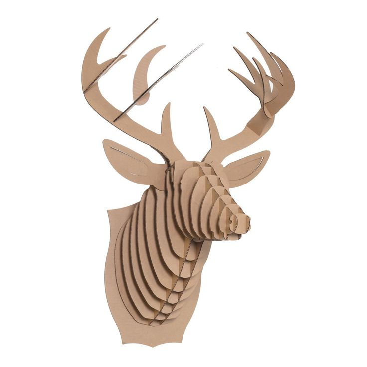 1000 Ideas About Cardboard Deer Heads On Pinterest Cardboard Deer Heads Pictures Of Deer And