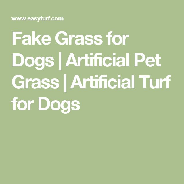 Fake Grass for Dogs   Artificial Pet Grass   Artificial Turf for Dogs