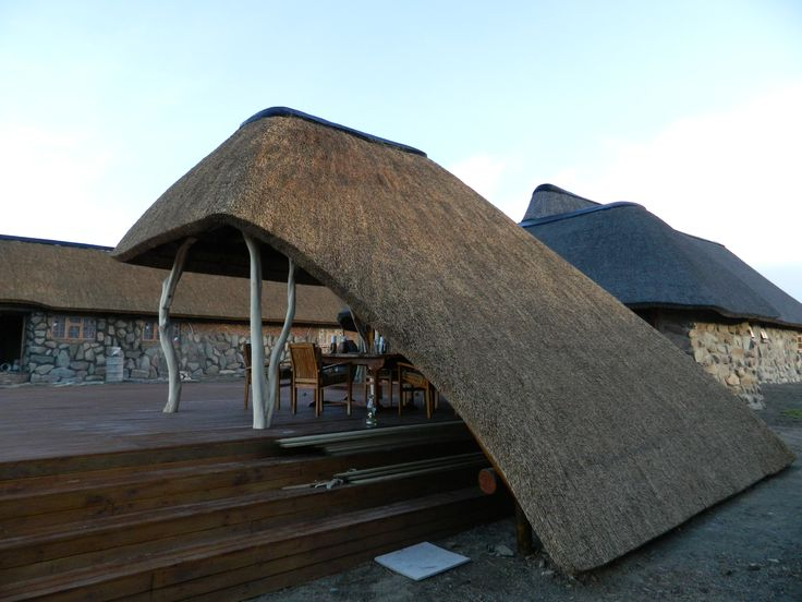 Thatched lapa at a game lodge in the Eastern Cape of South Africa. The shaping of the thatch down to ground level with the curved cut of the edge is quite eye catching and unusual