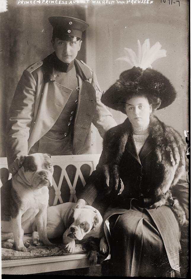 Prussia, August Wilhelm, Prince of, Germany*29.01.1887-+son of the last German emperor- with his wife Princess Alexandra Victoria of Schleswig-Holstein-Sonderburg-Gluecksburg and their dogs - Photographer: Selle & Kuntze- 1910Vintage . Pinned by Judi Crowe.