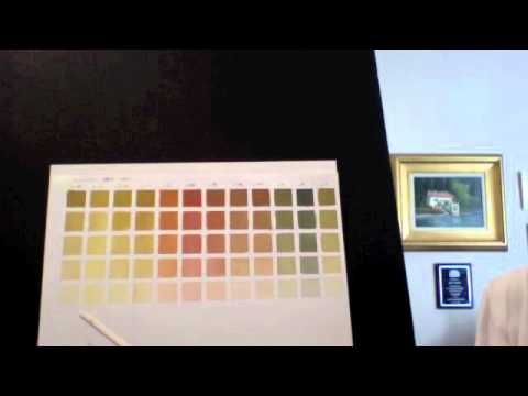 Pat Fiorello Oil Painting- How to Make Color Charts - video   As in Alla Prima