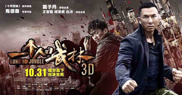 Kung Fu Jungle Review http://www.easternfilmfans.co.uk/?p=3514