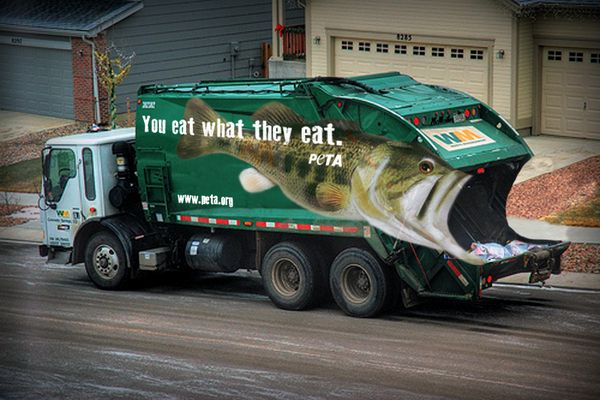 Fish Garbage truck Advert
