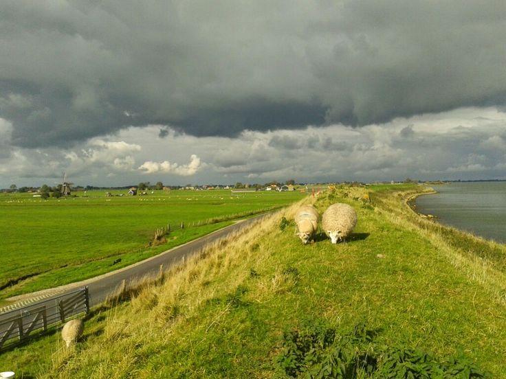 IJsselmeerdijk bij Edam