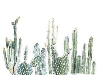 Cactus Family Watercolor Painting Cacti Cactus by Littlecatdraw
