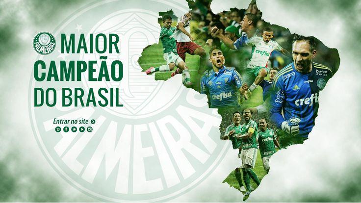 Palmeiras, Campeão da Copa do Brasil 2015!