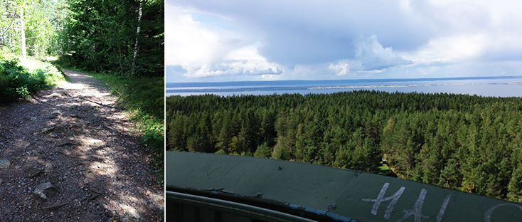 Grännaleden och Tegnértornet – Njut av kuperad, vacker natur och svindlande utsikt   Smålands smultron