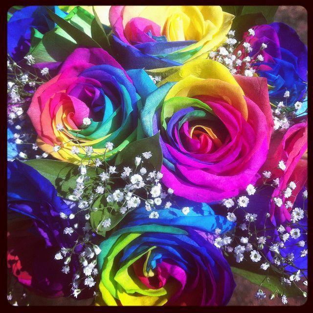 cheerful rainbow colors rainbow rose bouquet