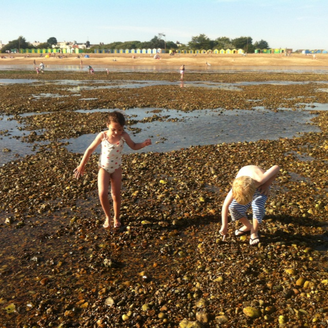 Crabbing in Littlehampton -   Perfect for when the grandchildren come to visit. Join us with McCarthy & Stone on 20th November - BN17 5FE
