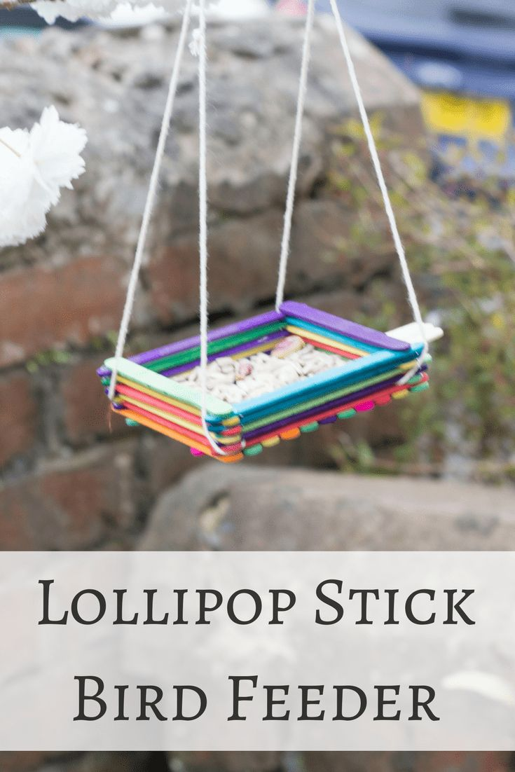 Ice Lolly Stick Bird Seed Feeder Tutorial