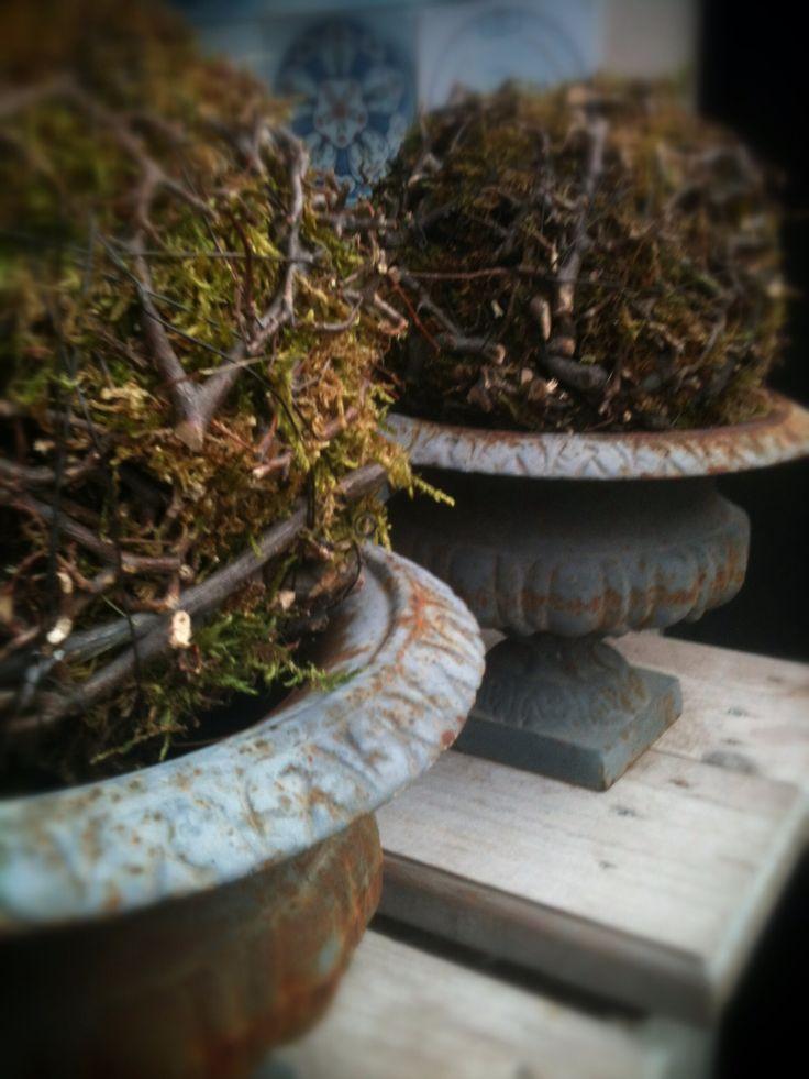 Takken..mos....ijzerdraad...gevormd tot mosdecoratie's in Franse ijzeren vazen..at home! Outdoors deco...branches..moss..winterstyling